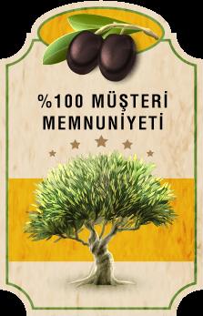 Lezzet Ödüllü Sızma Zeytinyağı,Erken Hasat Zeytinyağı,Zeytin Çeşitleri,Sızma Zeytinyağı Fiyatları